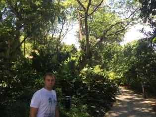Little Brezel in the park