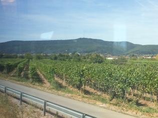 IMG_17_Anfahrt auf die Pfalz