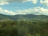 IMG_21_Black Forest 2