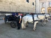 Salzburg Viaker 7